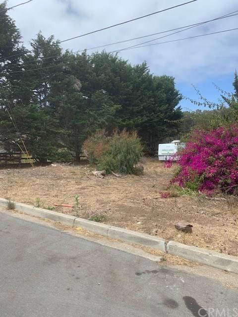 302 Woodland Drive, Los Osos, CA 93402 (#SC20163026) :: Re/Max Top Producers