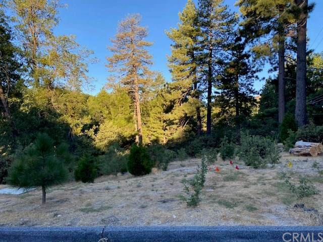 1180 Maverick Lane, Lake Arrowhead, CA 92352 (#EV20162042) :: Re/Max Top Producers