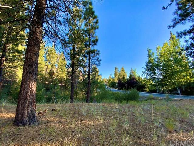 0 Castlewood Road, Big Bear, CA 92315 (MLS #EV20164173) :: Desert Area Homes For Sale