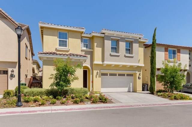 156 Caladenia Lane, Milpitas, CA 95035 (#ML81805831) :: Laughton Team | My Home Group