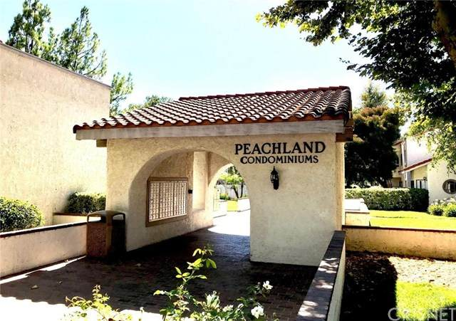 25023 Peachland Avenue #251, Newhall, CA 91321 (#SR20163522) :: Laughton Team | My Home Group