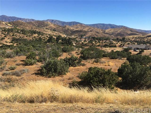 0 Vac/Escondido Canyon Rd/Bigspr - Photo 1