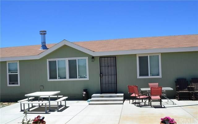 42945 Yucca Valley Road, Anza, CA 92539 (#SW20164675) :: RE/MAX Masters
