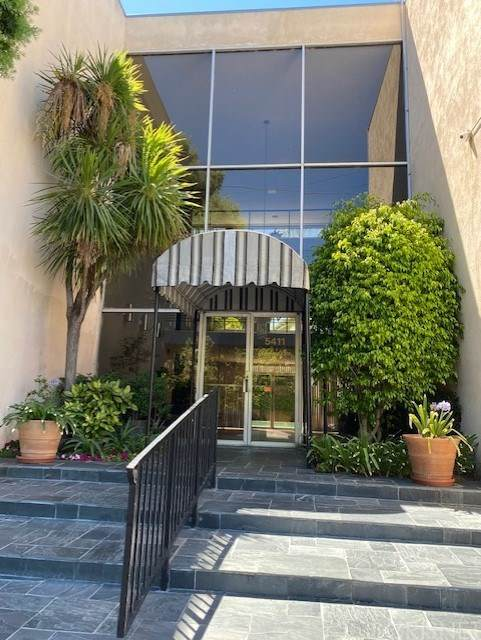 5411 Tyrone Avenue #206, Sherman Oaks, CA 91401 (#SR20164824) :: Team Forss Realty Group
