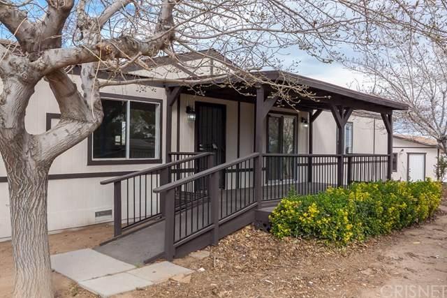 12347 E Ave V-10, Pearblossom, CA 93553 (#SR20164866) :: The Laffins Real Estate Team