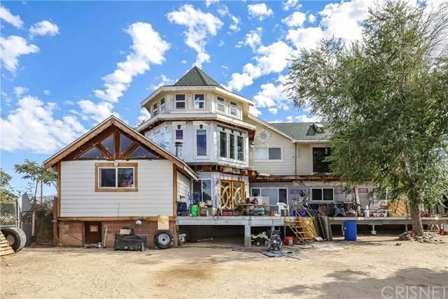 33048 223rd Street E, Llano, CA 93544 (#SR20164935) :: eXp Realty of California Inc.