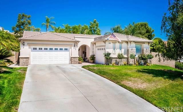 28218 Tambora Drive, Canyon Country, CA 91351 (#SR20164019) :: American Real Estate List & Sell