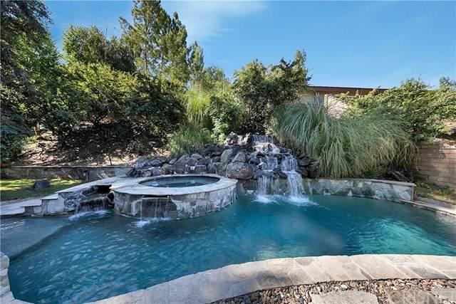 21136 Elder Creek Drive, Saugus, CA 91350 (#SR20159019) :: Millman Team