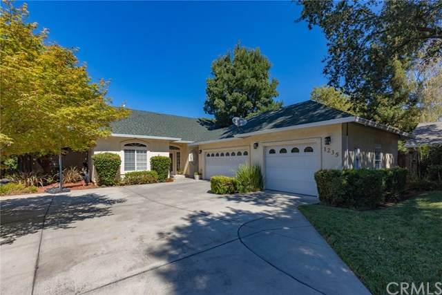 1235 Mary Arthur Court, Chico, CA 95926 (#SN20164682) :: The Laffins Real Estate Team