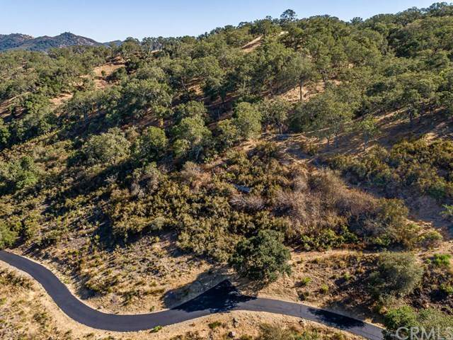 8330 San Diego Road, Atascadero, CA 93422 (#NS20165623) :: Legacy 15 Real Estate Brokers