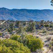 27 Scenic Drive, Mountain Center, CA 92561 (#219047865DA) :: eXp Realty of California Inc.