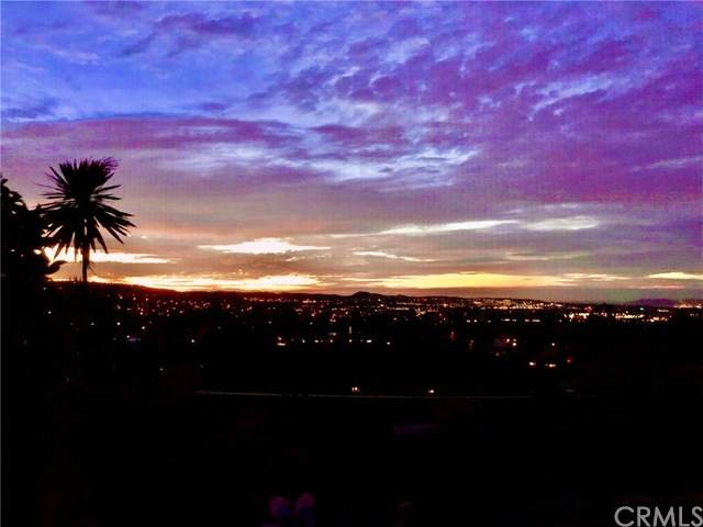 24451 Los Serranos Drive - Photo 1