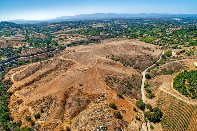 Olive Hill Road, Bonsall, CA 92003 (#200040235) :: Hart Coastal Group