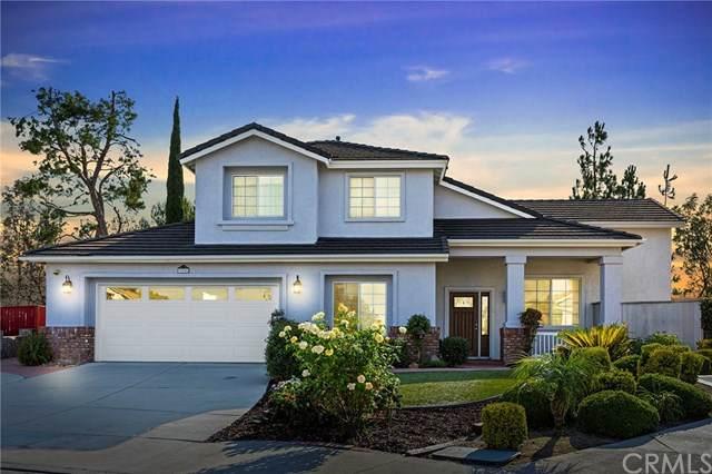 32246 Cour Pomerol Drive, Temecula, CA 92591 (#SW20155119) :: Z Team OC Real Estate