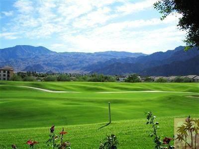 78155 Calle Norte, La Quinta, CA 92253 (#219048135DA) :: The Costantino Group | Cal American Homes and Realty