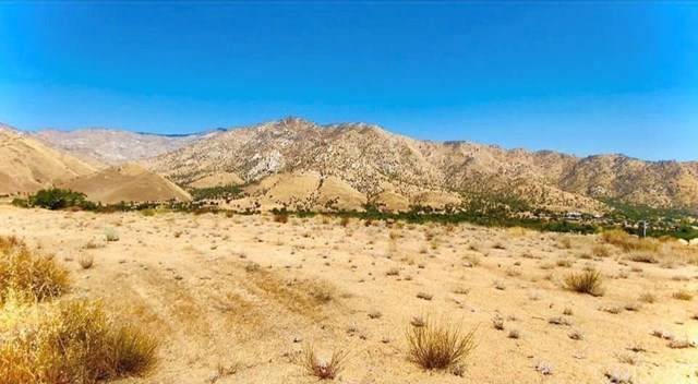 290 Walker Drive, Lake Isabella, CA 93238 (#SR20171979) :: TeamRobinson | RE/MAX One