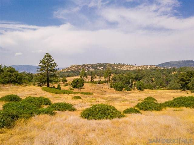 25240 Black Canyon Rd, Santa Ysabel, CA 92070 (#200040868) :: The Results Group