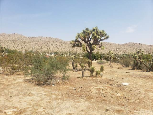 0 Little League Drive, Yucca Valley, CA 92284 (#JT20174497) :: RE/MAX Masters