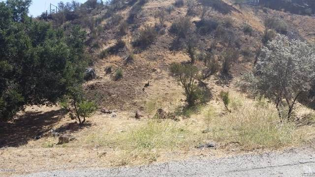 1 Canyon Way, Agoura Hills, CA 91301 (#220009224) :: Bathurst Coastal Properties