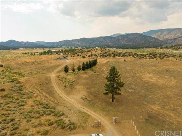 14486 Boy Scout Camp Road, Frazier Park, CA 93225 (#SR20176878) :: American Real Estate List & Sell