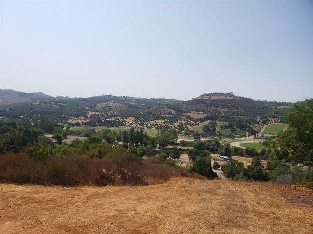 0 Camino Del Rey, Bonsall, CA 92003 (#200041587) :: Hart Coastal Group