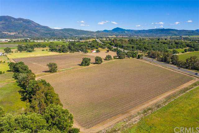 4635 Renfro Drive, Lakeport, CA 95453 (#LC20176986) :: The Laffins Real Estate Team