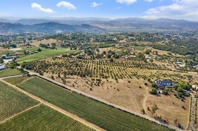 2313 Via Rancheros, Fallbrook, CA 92028 (#200041606) :: The Laffins Real Estate Team
