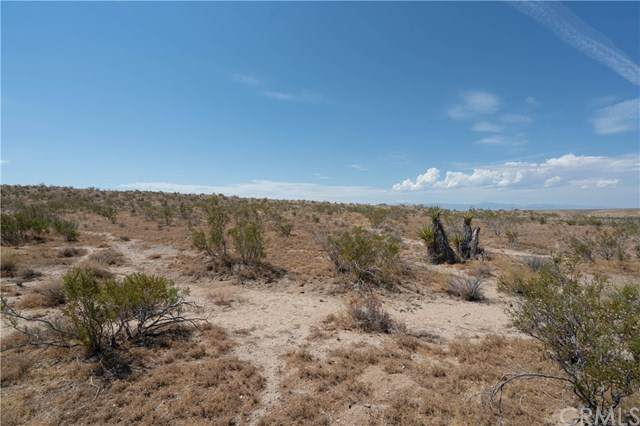 0 Oleander, Helendale, CA 92368 (MLS #FR20177083) :: Desert Area Homes For Sale