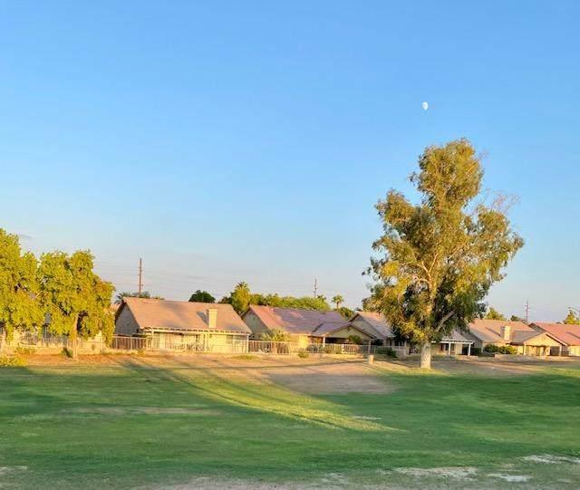 49210 Wayne Street, Indio, CA 92201 (#219048624DA) :: Blake Cory Home Selling Team