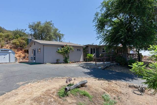 20032 Deerhorn Valley Rd, Jamul, CA 91935 (#200042362) :: Steele Canyon Realty