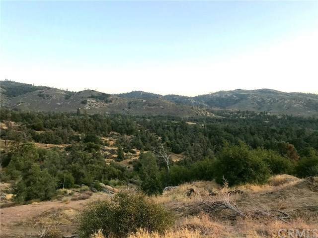 0 Thompson Canyon Avenue, Caliente, CA 93518 (#FR20180741) :: Go Gabby