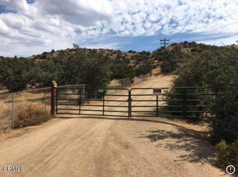6440 Hubbard Road - Photo 1