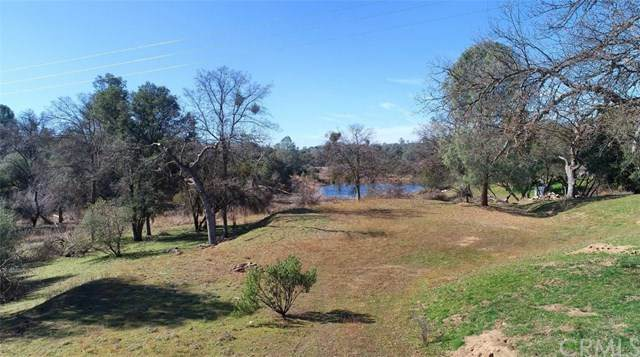 0-3.34 AC Old Corral Road - Photo 1