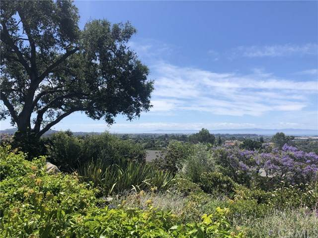 1465 Holiday Hill Road, Goleta, CA 93117 (#TR20182817) :: Crudo & Associates