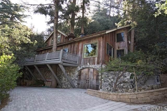 9441 Cedar Drive, Forest Falls, CA 92339 (#EV20182607) :: The Najar Group