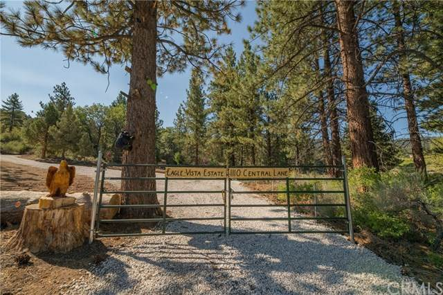 1110 Central Lane, Big Bear, CA 92314 (#EV20185126) :: Crudo & Associates