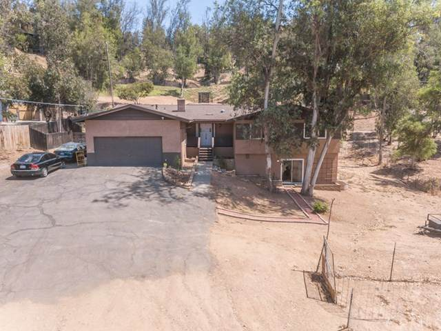 10957 Valle Vista Road, Lakeside, CA 92040 (#SW20184297) :: Arzuman Brothers