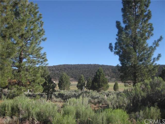 2805 Cedar Lane, Big Bear, CA 92314 (#IV20186411) :: Crudo & Associates