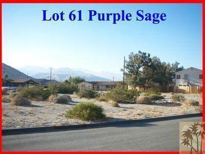 Lot 61 Purple Sage, Palm Springs, CA 92262 (#219049286DA) :: The Costantino Group | Cal American Homes and Realty