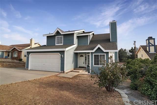 14670 Flintstone Drive, Lake Hughes, CA 93532 (#SR20188717) :: The Laffins Real Estate Team