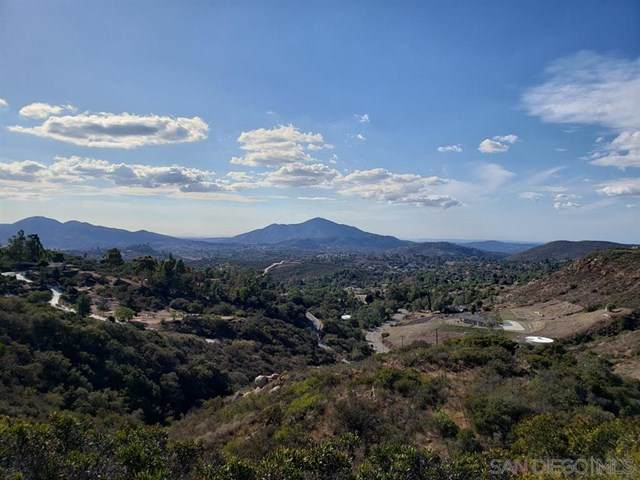 0 Lyons Valley Rd, Jamul, CA 91935 (#200044396) :: Steele Canyon Realty