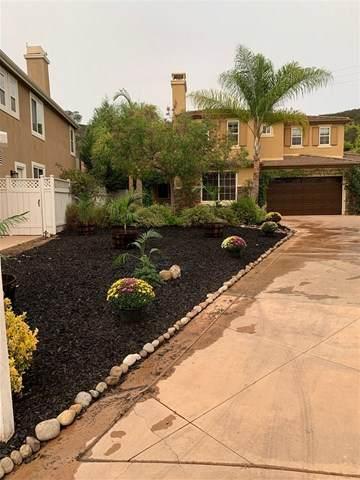 10159 Pinecastle Street, San Diego, CA 92131 (#200044448) :: Hart Coastal Group