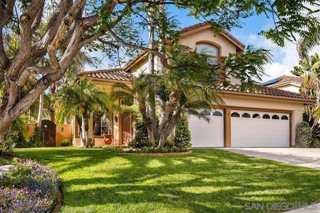 970 Whimbrel Ct, Carlsbad, CA 92011 (#200044541) :: The Laffins Real Estate Team