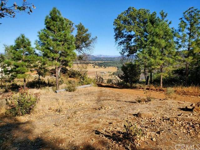 21960 St Helena Creek Road, Middletown, CA 95461 (#LC20189611) :: The Laffins Real Estate Team