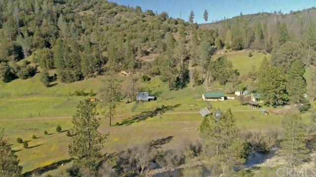 8651 Bull Creek Road, Coulterville, CA 95311 (#MP20188167) :: Twiss Realty