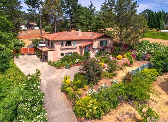 1615 Eastlake Drive, Kelseyville, CA 95451 (#LC20189298) :: eXp Realty of California Inc.