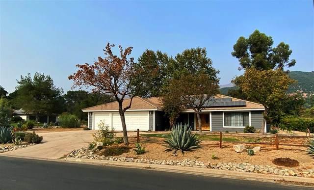 32035 Wiskon Way E, Pauma Valley, CA 92061 (#200044839) :: The Laffins Real Estate Team