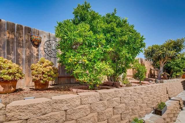 7974 San Carlos Dr, San Diego, CA 92119 (#200045013) :: Crudo & Associates