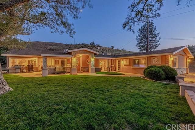 10600 Leona Avenue, Leona Valley, CA 93551 (#SR20192631) :: The Laffins Real Estate Team