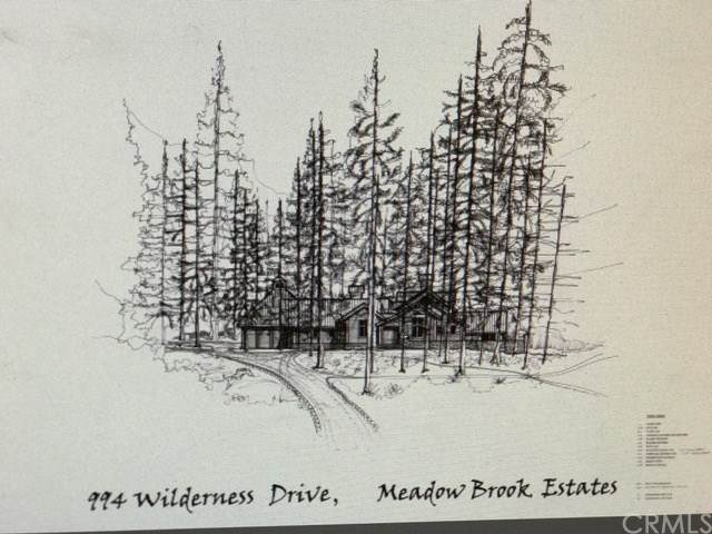 994 E Wilderness Dr, Big Bear, CA 92314 (MLS #OC20191863) :: Desert Area Homes For Sale